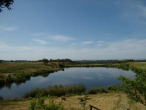 Lago anexo a la casa rural